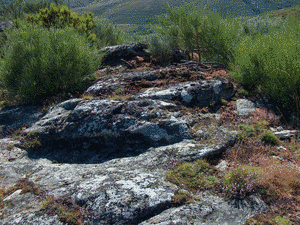 A SERRA II (Petroglifo) (ESGOS)