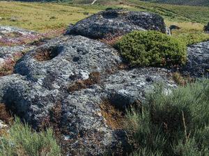A SERRA IV (Petroglifo) (ESGOS)