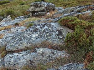A SERRA IX (Petroglifo) (ESGOS)