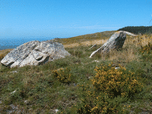Petroglifo e cruz de termo no LIMITE ESGOS-XUNQUEIRA DE ESPADANEDO