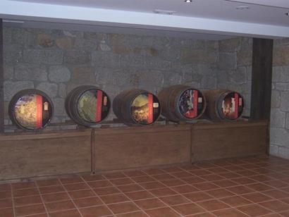Centro de interpretación da Rribeira Sacra-3